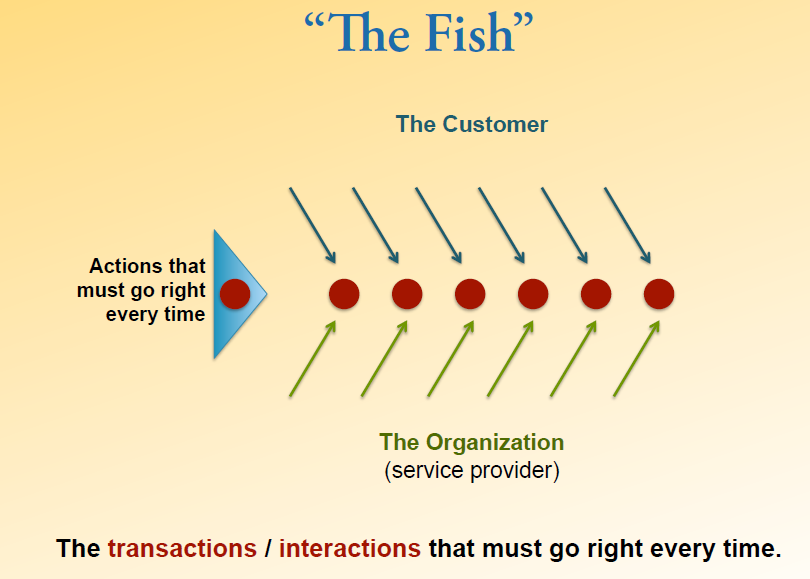 The cusyomer loyalty experience system loyalty solutions for Fish customer service
